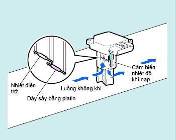 Luồng khí di chuyển qua cảm biến lưu lượng khí nạp