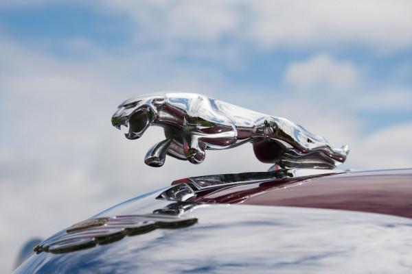 """Lịch sử Jaguar: Xe hơi """"quý tộc"""" của người Anh."""